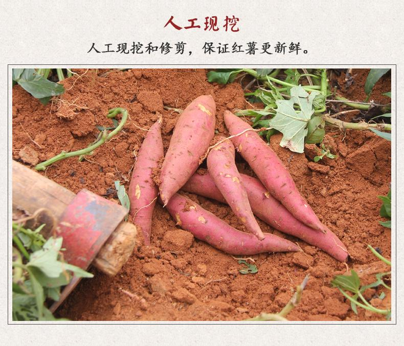 http://b2bwings-goods-image.oss-cn-shenzhen.aliyuncs.com/22b0f1a9-1385-451c-ad1f-c6eb0001fc00.jpg