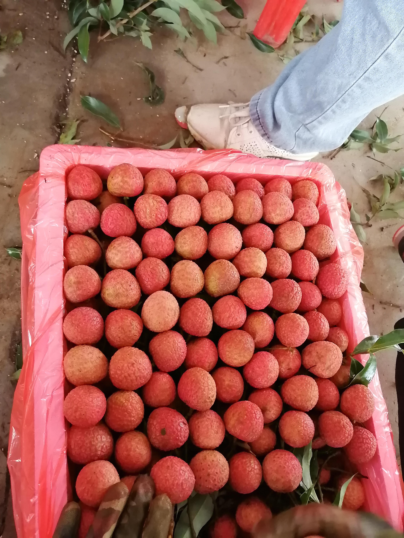 http://b2bwings-goods-image.oss-cn-shenzhen.aliyuncs.com/4d81ad4a-f99e-4561-afad-30a5a9118d9e.jpg
