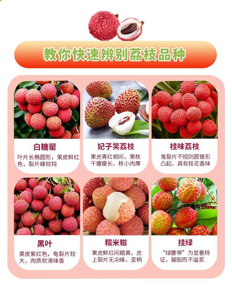 http://b2bwings-goods-image.oss-cn-shenzhen.aliyuncs.com/6f0ee1b5-d73b-4554-9250-fbcde3d41a03.jpg