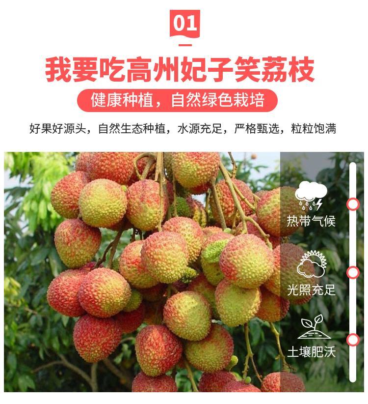 http://b2bwings-goods-image.oss-cn-shenzhen.aliyuncs.com/cf887b3d-9937-451b-908b-2d74b59d333b.jpg