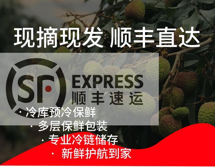 http://b2bwings-goods-image.oss-cn-shenzhen.aliyuncs.com/e2a31c0f-97ac-4f63-9027-32ebfd05d48c.jpg