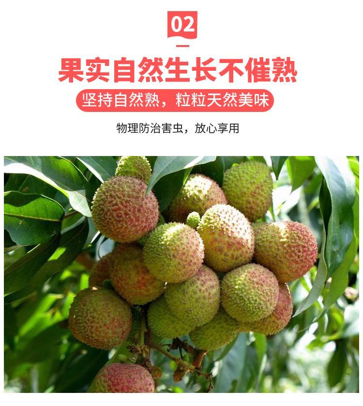 http://b2bwings-goods-image.oss-cn-shenzhen.aliyuncs.com/fac82f4f-68af-4732-86dd-9088d635a27f.jpg